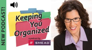 SMEAD podcast - how professionals on the go can stay productive - Helene Segura