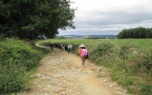 hiking in field - Camino de Santiago